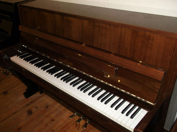 Piano occasion à Vendre RIEGER KLOSS 106